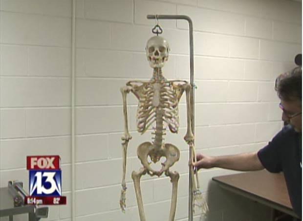 Casal pagou US$ 8 pelo esqueleto que pensava ser feito de plástico.