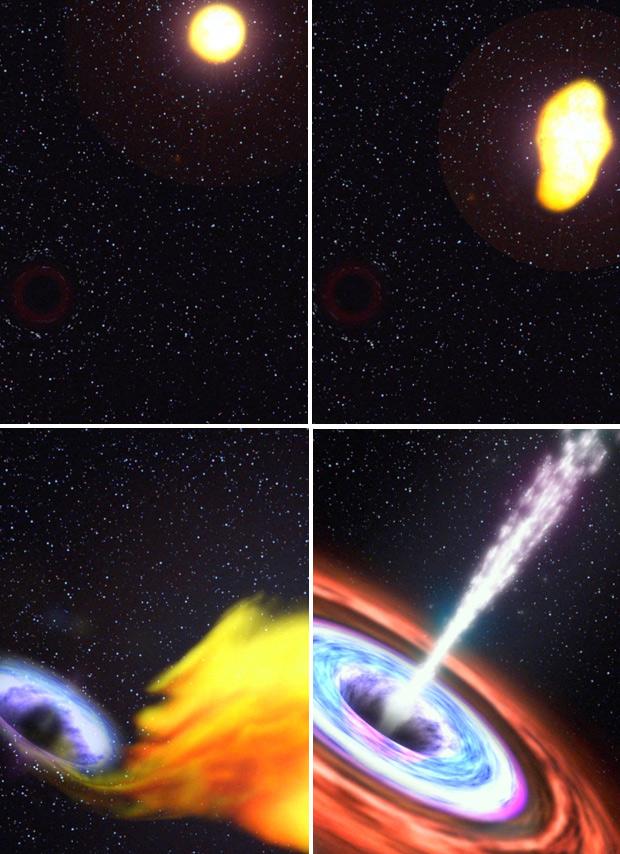 Ilustrações mostram buraco negro devorando estrela. (Foto: Nasa)