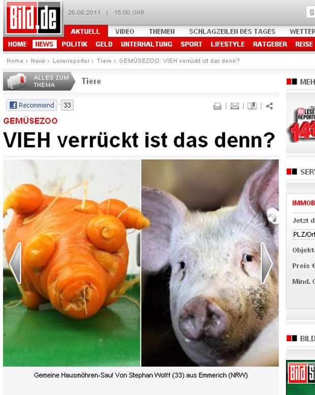 Cenoura lembra o formato de um porco. (Foto: Reprodução/Bild)