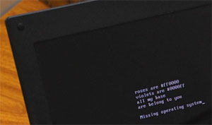 """Na foto, computador teve """"poema geek"""" colocado no MBR. Computador não inicia mais o sistema operacional (Foto: Altieres Rohr/Especial para o G1)"""