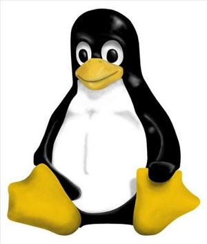 Tux, mascote do Linux. Sistema foi anunciado em 1991 (Foto: Divulgação)