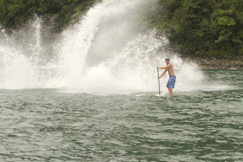 125948838 - Baleia Jubarte é filmada durante salto espetacular