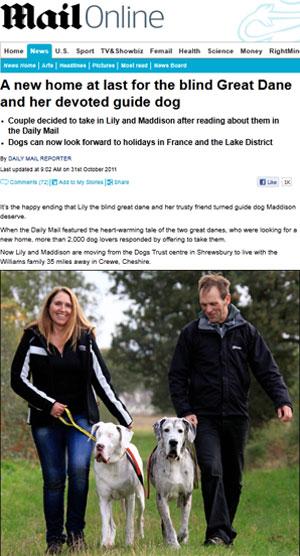 Os felizes novos donos passeiam com os cães Lily e Maddison (Foto: Reprodução/Daily Mail)