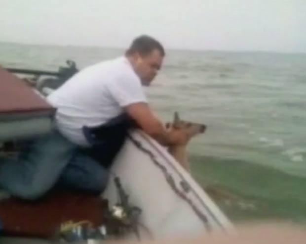 Em 2011, o norte-americano Dave Falkenburg disse ter capturado um veado durante uma pescaria em Michigan, nos EUA. Falkenburg e seu filho Justin, de 13 anos, estavam em um barco na costa de Saginaw, quando flagraram o animal na água. (Foto: Reprodução)