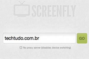 Screenfly (Foto: Reprodução)