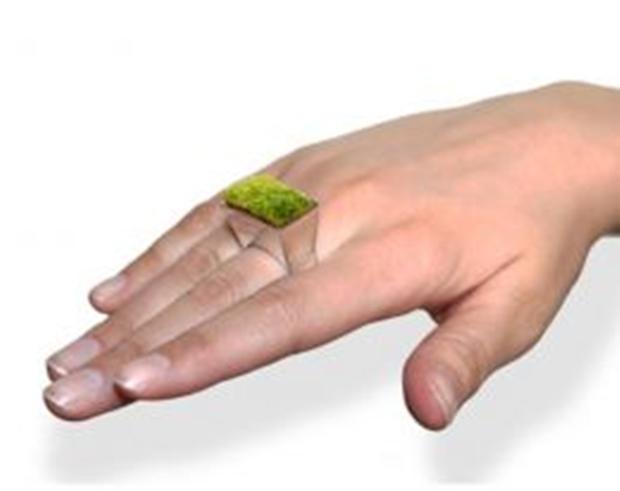 The Growing Ring é um anel com uma pequena planta acoplada (Foto: Reprodução/Lyla Hubpages)