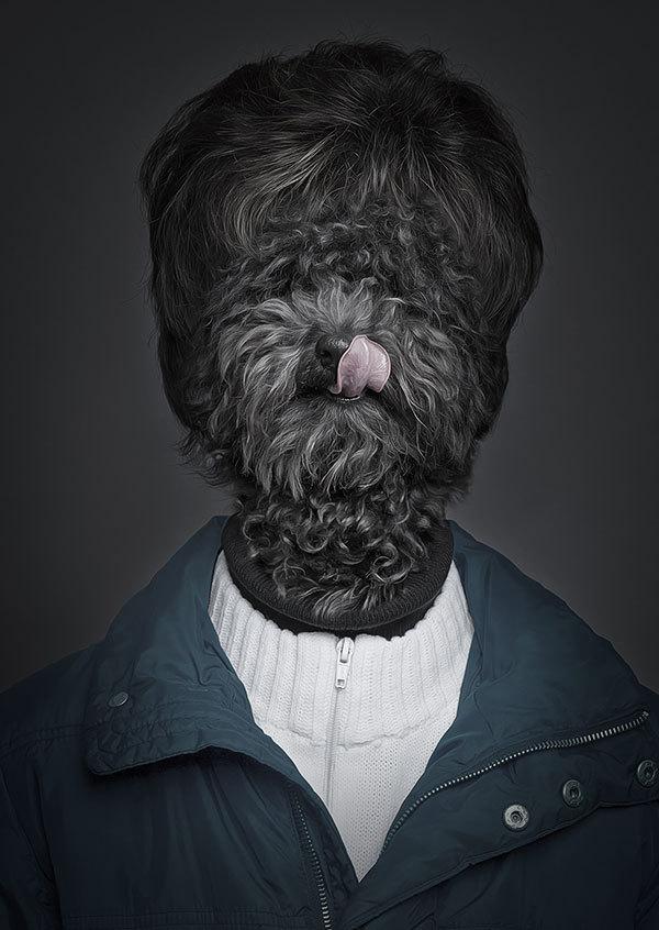 Sebastian Magnani cria serie fotográfica com cachorros vestidos como pessoas. (Foto: Sebastian Magnani)