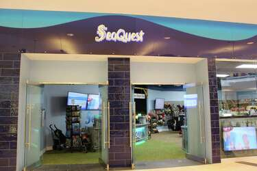 Image result for seaquest trumbull free image