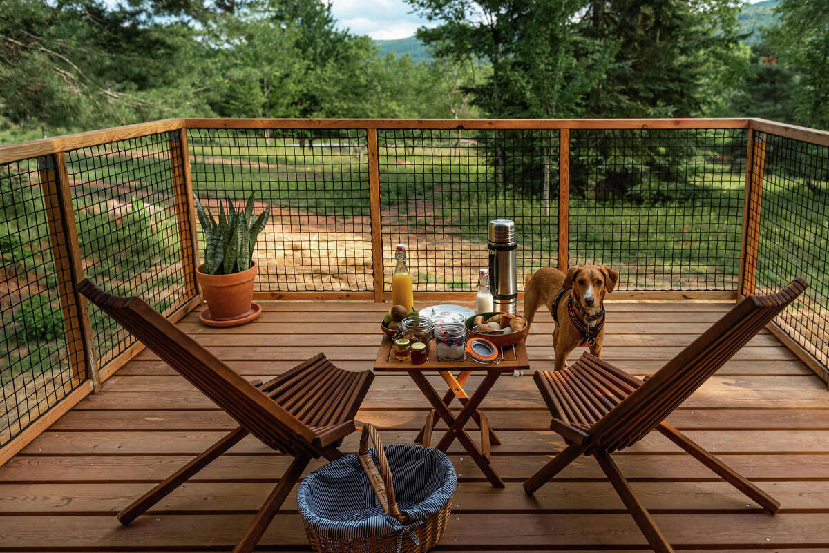 The dog-friendly Lushna suite at Eastwind Hotel & Bar near Windham Mountain.