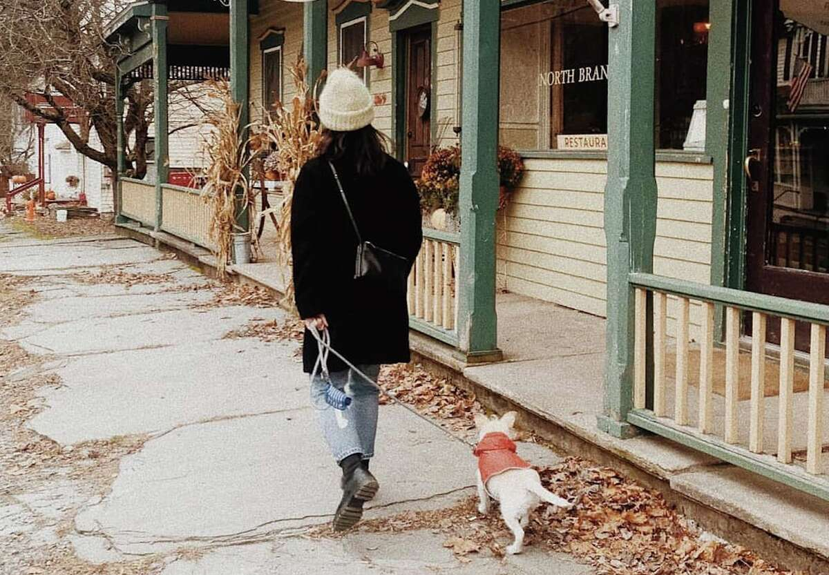 The North Branch Inn and many of its sister Foster Supply Co. properties nearby welcome dogs.