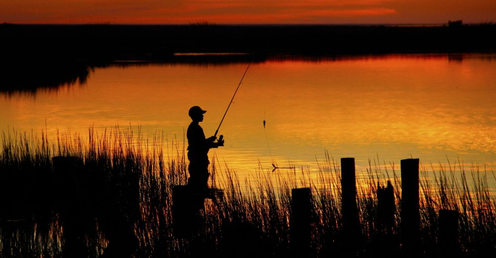 License sales show hunting, fishing renaissance amid pandemic