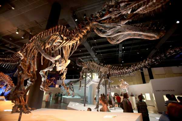 Museum Of Natural Science Cancels Controversial Scientist