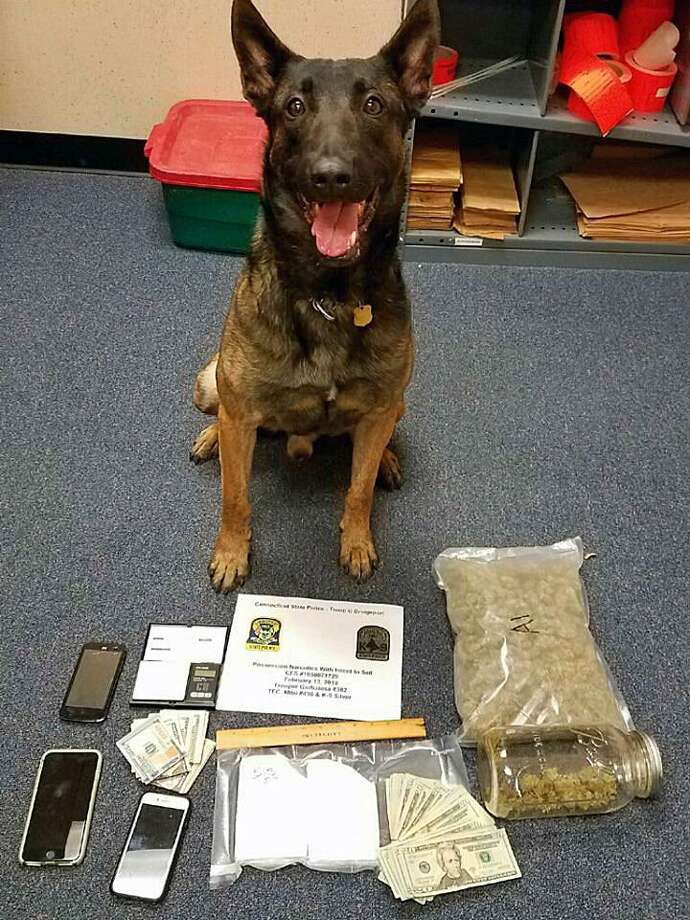 Two face charges after a K9 found one pound of marijuana and over one-half kilogram of powder cocaine during a traffic stop on Jan. 13, 2018, in Orange, Conn. Photo: Contributed Photo / Connecticut State Police / Contributed Photo / Connecticut Post Contributed