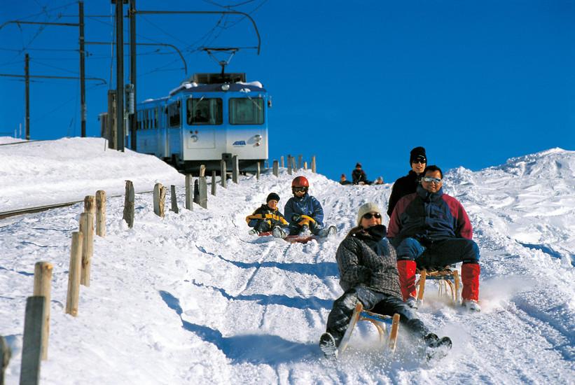 Sledging in Central Switzerland  Leisure Activities