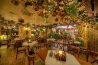 Patio Park | Restaurants | Katowice