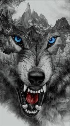 Download Angry Wolf Wallpaper By Georgekev Now Angry Wolf Wallpaper Hd #129425 HD Wallpaper & Backgrounds Download