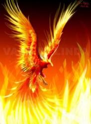 Greek Mythology Creatures Phoenix Bird #1381581 HD Wallpaper & Backgrounds Download
