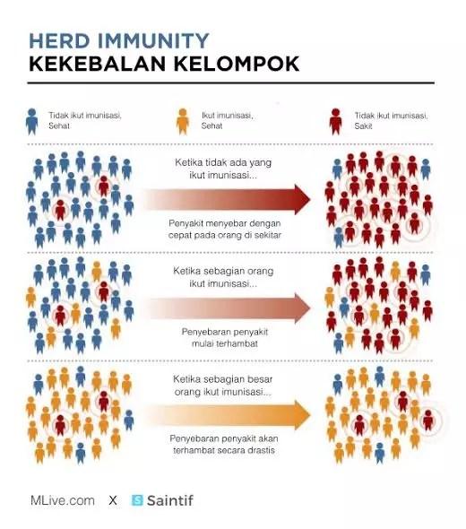 Untuk Sembuh Total Dari Virus Covid-19, Setujukah Indonesia Melakukan Herd Immunity