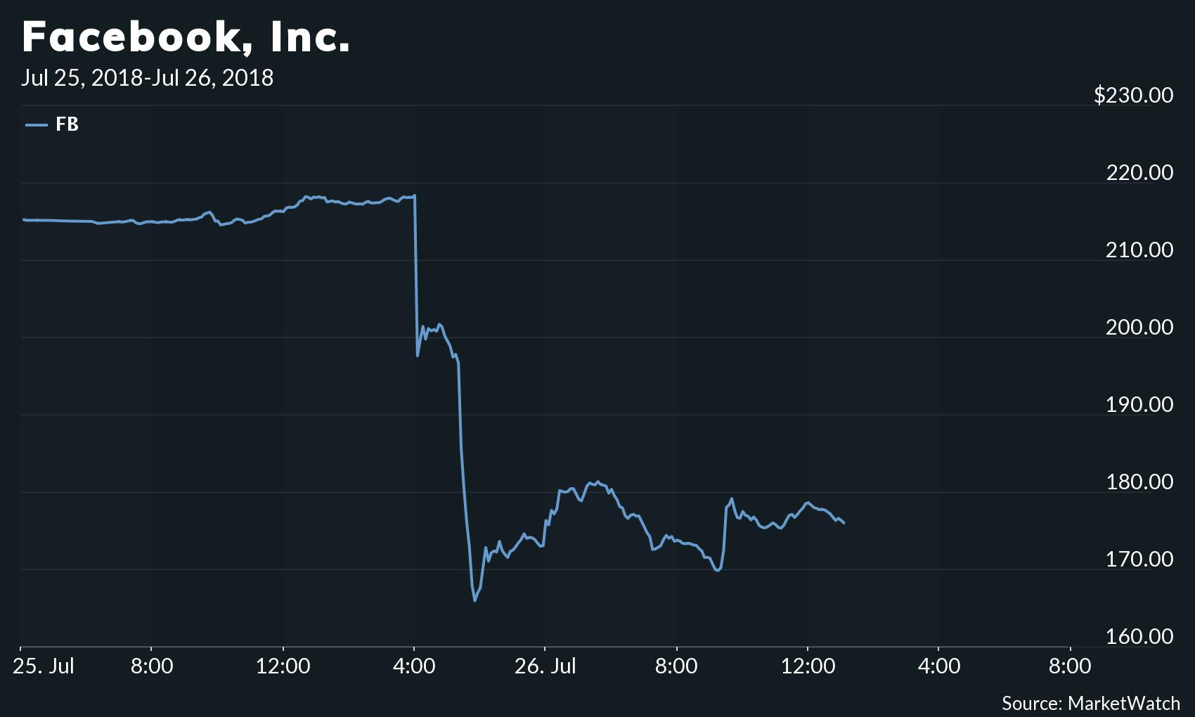 facebook stock drops roughly