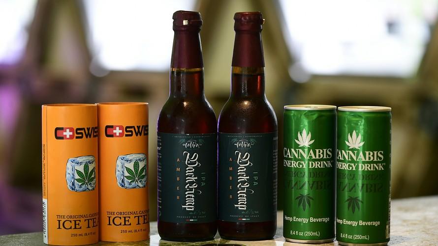 cannabis stocks rally on