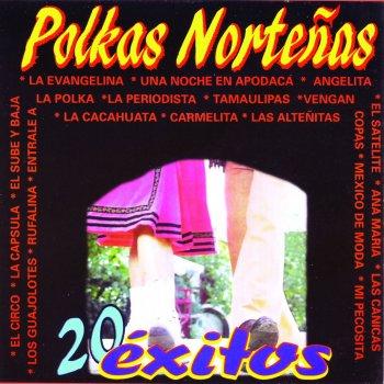 Testi Polkas Norteñas (20 Éxitos) Los Hermanos Prado Testi