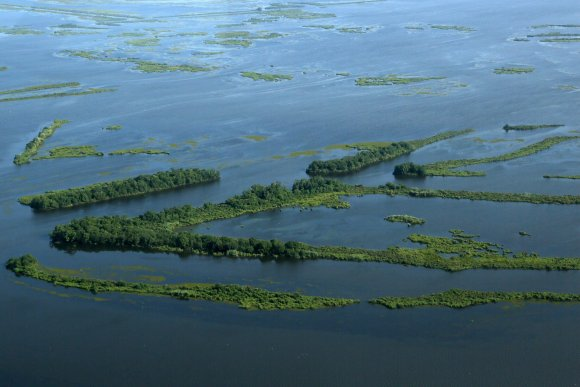The Louisiana coast is sinking 50 percent more rapidly than anyone thought, according to study