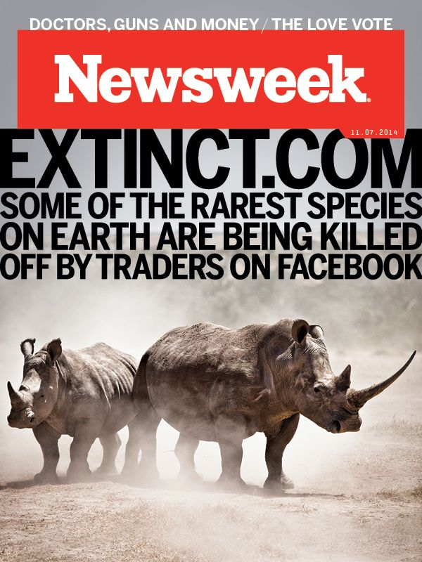 The Black Market Trade for Endangered Animals Flourishes