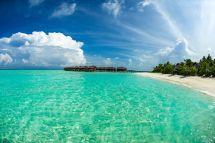 Maldives Paradise Lost