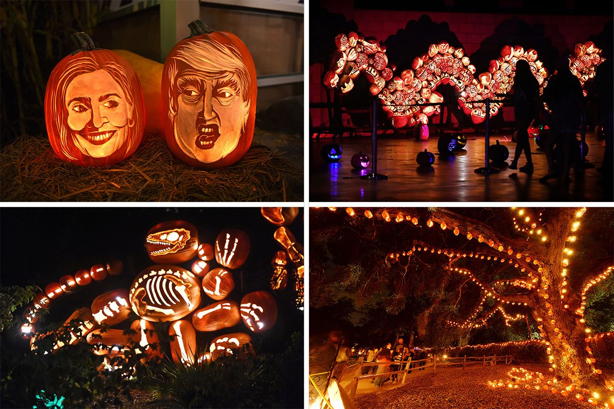 Halloween Pumpkin Carving Ideas Spectacular Jack O