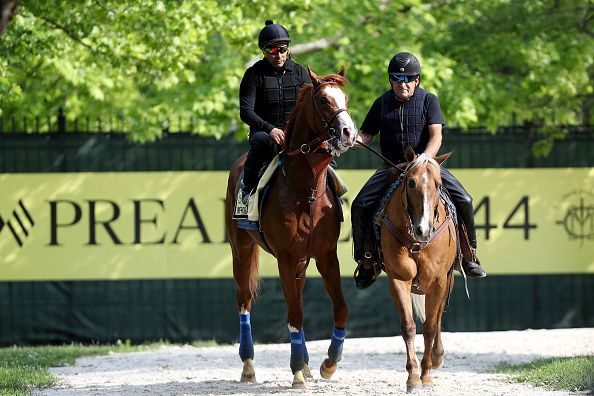 Preakness Stakes 2019 Contenders Post Positions Latest