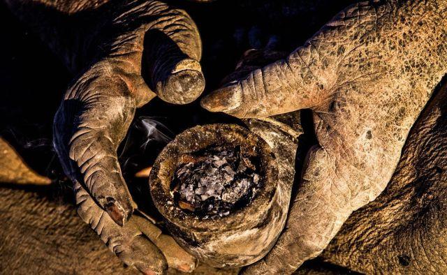 世界上最髒的男人!伊朗87歲阿公67年不洗澡