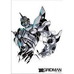 SSSS.GRIDMAN ORIGINAL ILLUSTRATION TAPESTRY: RE:BIRTH Indor