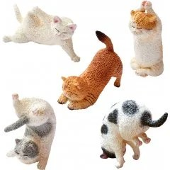 ANIMAL LIFE BABY YOGA CAT (SET OF 6 PIECES) Yendar