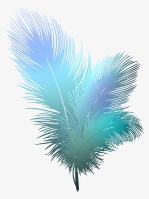 feather ing az - peacock