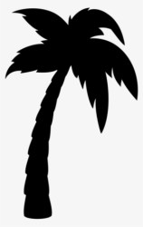 Palm Tree Silhouette PNG Free HD Palm Tree Silhouette Transparent Image PNGkit