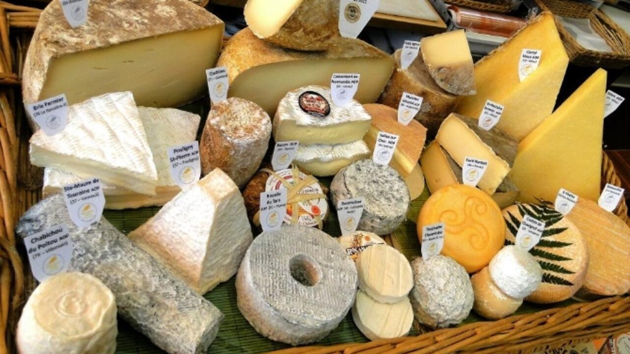美味的法國奶酪 - 法國美食