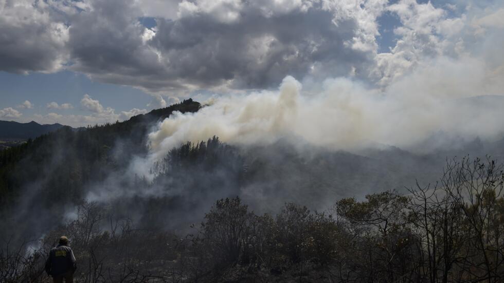 Les autorités colombiennes ont brûlé le laboratoire de cocaïne découvert dans une forêt à Guasca, en Colombie, le 13 février 2020.