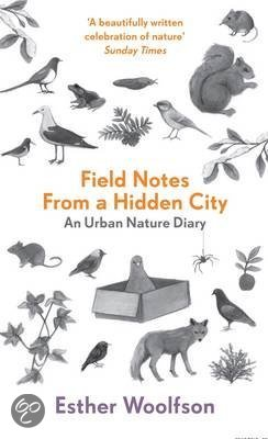 Image result for field notes from a hidden city