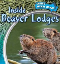 inside a beaver lodge diagram [ 1164 x 1200 Pixel ]