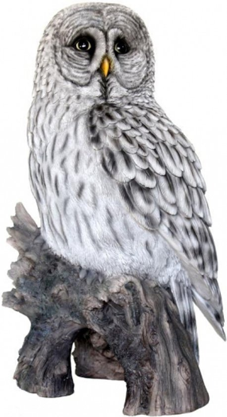bolcom  Bosuil uilen beeldje 52 cm