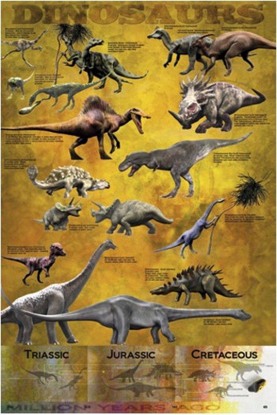 bolcom  Poster dinosaurus 61 x 915 cm