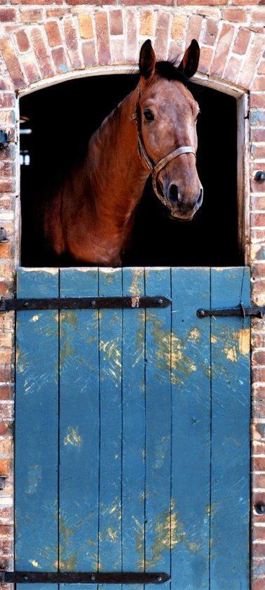 bolcom  Fotobehang Deurposter Paard Dieren 90 x 200