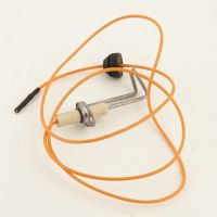 Furnace Burner, Flame Sensor and Igniter Assembly | Part ...