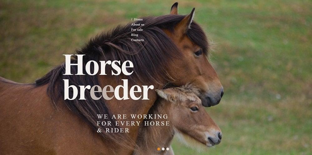 Horse Breeder WordPress Theme