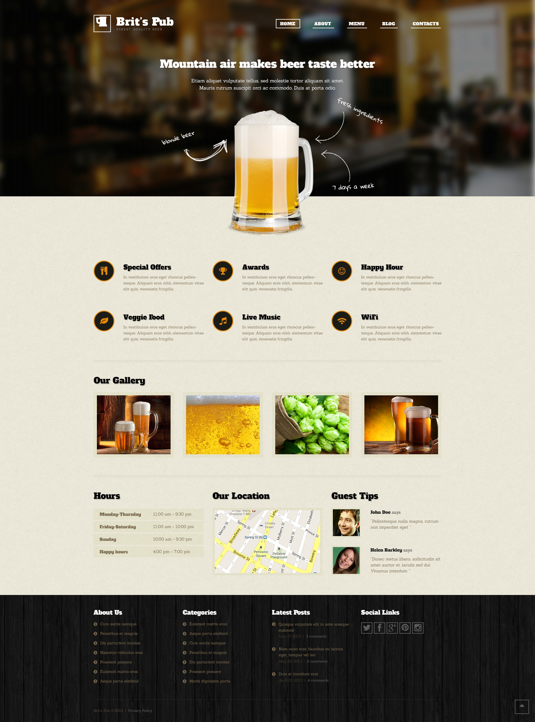 Beer Pub WordPress Theme 46902