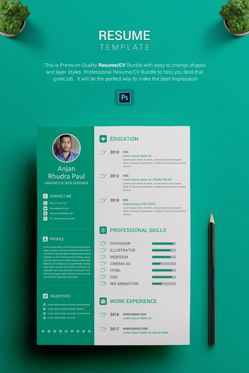 resume format of experience