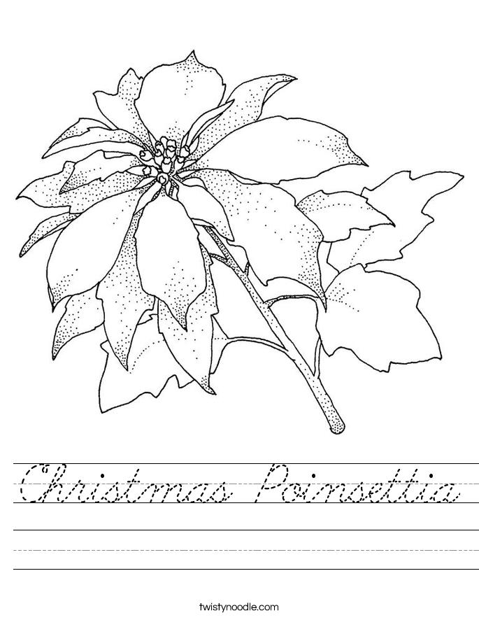 christmas poinsettia worksheet  cursive  twisty noodle