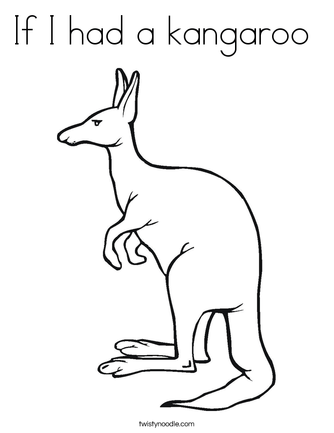 How To Draw A Kangaroo 5 By Diana