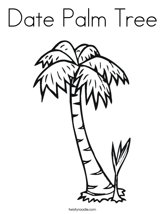 Date Palm Tree Coloring Page - Twisty Noodle
