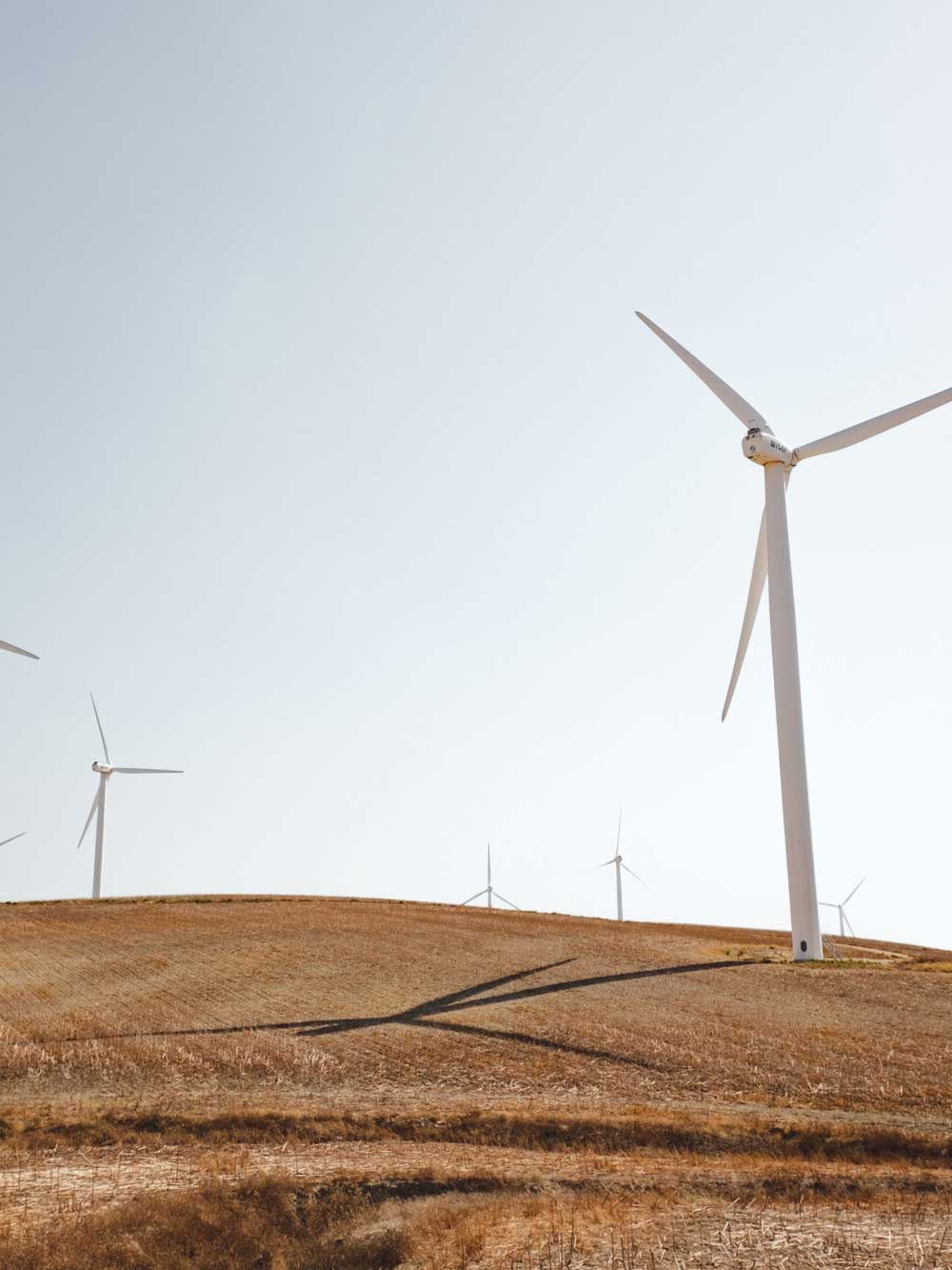 Wind Turbines Standing On A Grassy Plain, Against A Blue Sky.